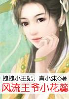 拽拽小王妃:风流王爷小花蕊