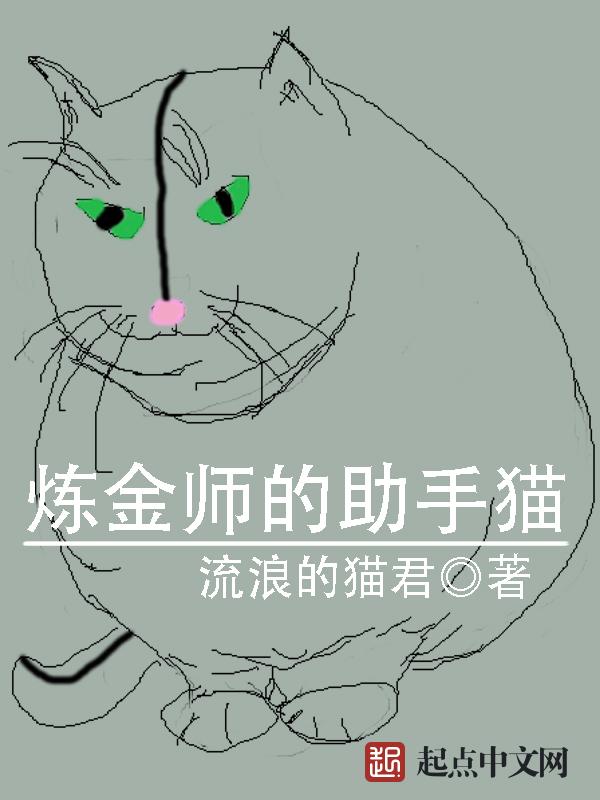 炼金师的助手猫