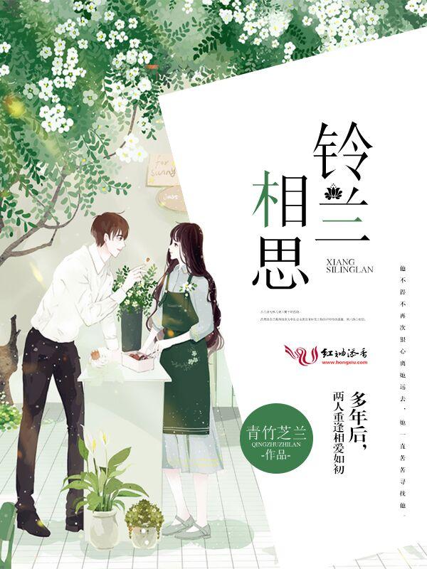段编风水小说