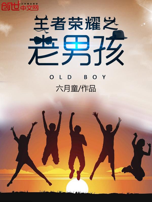 《王者荣耀之老男孩》主角叶峰荣耀大结局最新章节