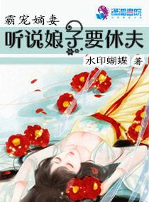 大学生村官小说