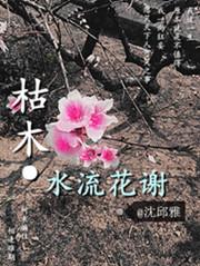 军衔类小说