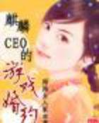麒麟CEO的游戏婚约