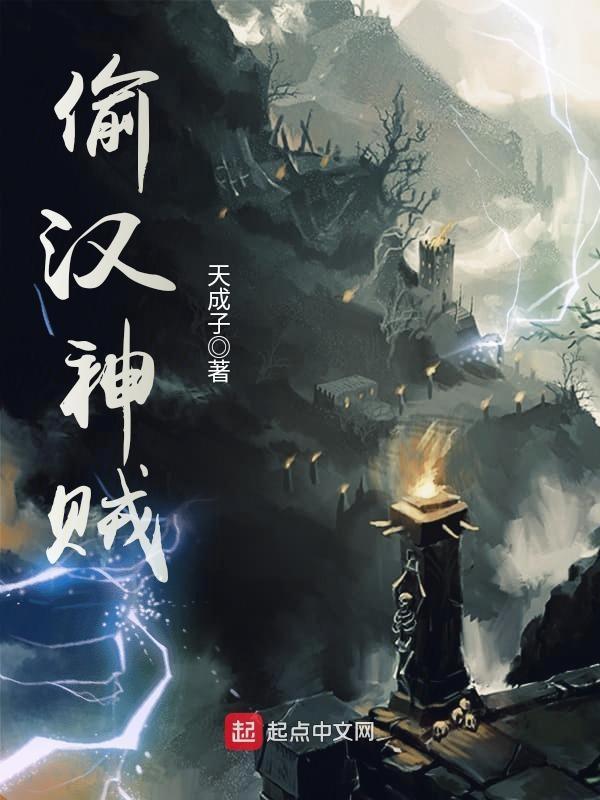 《偷汉神贼》主角小山村顾雍免费阅读免费试读
