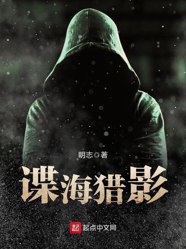 《谍海猎影》主角关景言陈浩秋完整版完本
