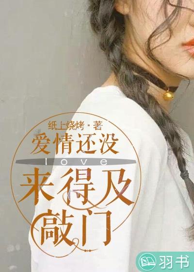 《爱情还没来得及敲门》主角夏小姐小说精彩阅读