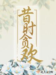 《昔时贪欢》主角徐小丫头免费阅读在线试读