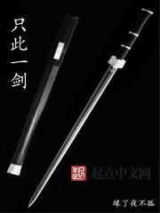 【只此一剑完整版无弹窗】主角肖宁不臣