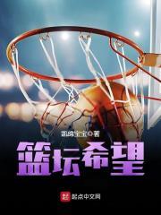 《篮坛希望》主角王凯师傅完本完结版