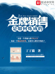 金牌销售是如何炼成的主角刘雯王晨宇精彩试读免费阅读