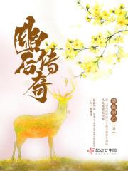 林志玲的h小说