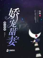 低调风水师小说