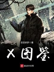 【X图鉴全文试读无弹窗】主角白沐风木剑