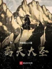 中文青春小说