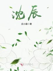 《沈辰》主角沈辰赵哥精彩试读完本大结局