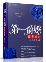 《第一爵婚》主角老夫老太太最新章节完结版