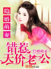 夏木槿小说