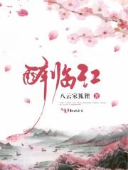 醉临江(主角小丫头李公子)免费阅读无弹窗