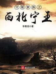 西北宁王江川传