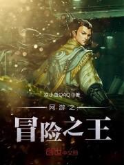 《网游之冒险之王》主角叶凉王无弹窗完整版最新章节