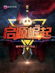 《网游之启源崛起》主角杨风天启完本在线阅读精彩试读