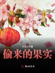主角是张宁的小说