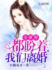 《全世界都盼着我们离婚》主角叶瑶秦允完结版完整版章节目录