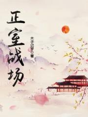 《正室战场》主角沈李璋锐最新章节全文阅读章节目录