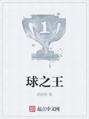 《球之王》主角夏宇康利小说全文试读