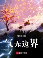【气无边界完结版小说】主角何安黑灵