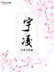《宇凌》主角凌林初晴免费阅读完结版精彩阅读