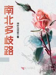 写纯中医的小说
