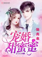 《陆先生宠婚甜蜜蜜》(主角麻醉苏溪)章节列表精彩章节完本
