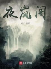 【夜岚阁完本全文试读】主角叶南笙刘远
