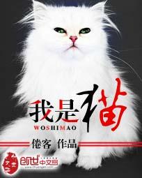 【我是猫完本小说完结版】主角杨胖子苗妙
