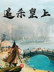 《追杀皇上》主角王怀钟成最新章节小说