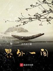 界外一阁(主角石子路西斜)小说大结局免费阅读