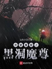 龙拳 小说
