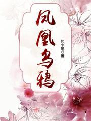 凤凰乌鸦主角曲灵黎精彩章节全文试读