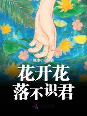 宋微阿豪小说