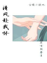 《清风赴我怀》主角沈崇归卓免费阅读完整版完本