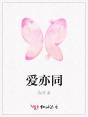 藏羚王小说