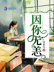 《因你无恙》主角凌司程安静小说精彩阅读