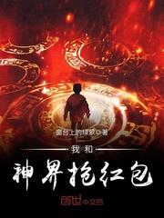 张逸枫的小说