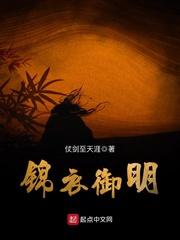 锦衣御明主角赵宗武天启精彩阅读精彩章节在线阅读