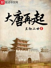 《大唐再起》(主角郎君李嘉)在线阅读大结局完本
