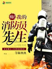 我的消防員先生免費閱讀精彩試讀 傅世槿秦在線閱讀精彩章節