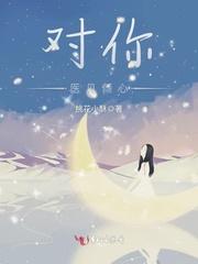 王杰的小说