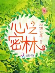 《心之密林》主角陈晓琪红梅最新章节章节列表全文阅读