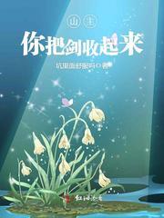 王皮皮小说